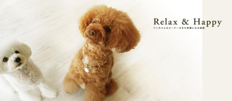 relaxandhappy-881x386
